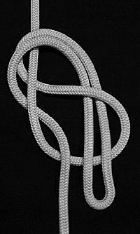 Sailing Knots In Line Figure 8 Loop